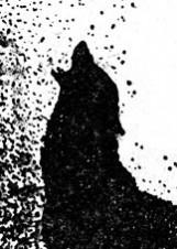 Иллюстрация Виктора Бахтина к повести «Башня птиц»