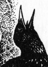 Иллюстрация Виктора Бахтина к повести «Несбывшееся, ты прекрасно!»