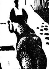 Иллюстрация Владимира Овчиннинского к повести «И распахнутся двери»